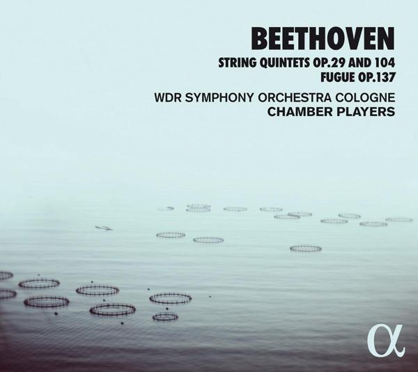 Puzzleteil in Beethovens Schaffen