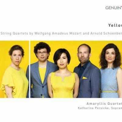 Amaryllis-Quartett-Yellow (c) Genuin