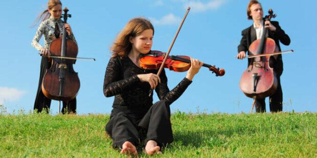 Musiker auf dem Deich