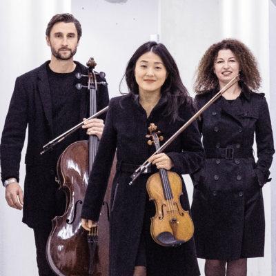 Trio Vasarely